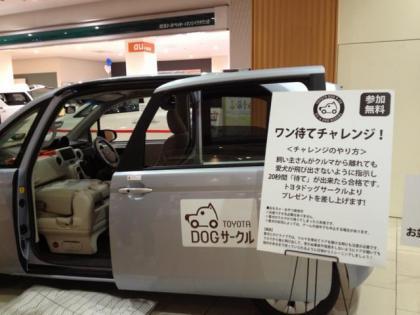20121020000.jpg