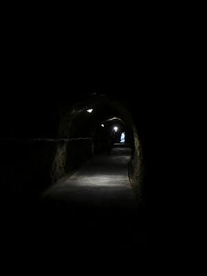 バスハイク 洞窟