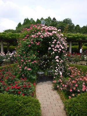 神代植物公園_ガゼボ20120521