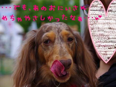 21_original_convert_20120605162758.jpg