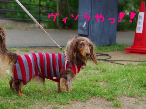 3_original_convert_20120605162047.jpg