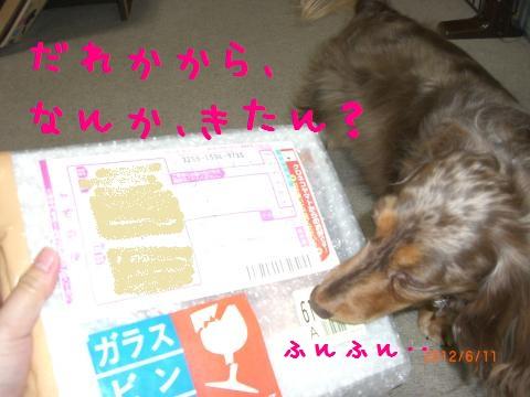 CIMG1085_convert_20120712093007.jpg