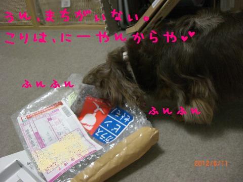 CIMG1089_convert_20120712093201.jpg