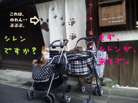 DVC00021_convert_20121011141214.jpg