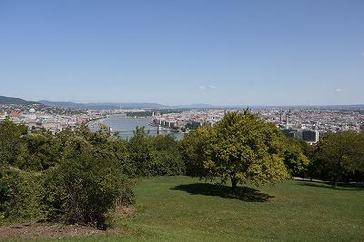 P2010776.jpg