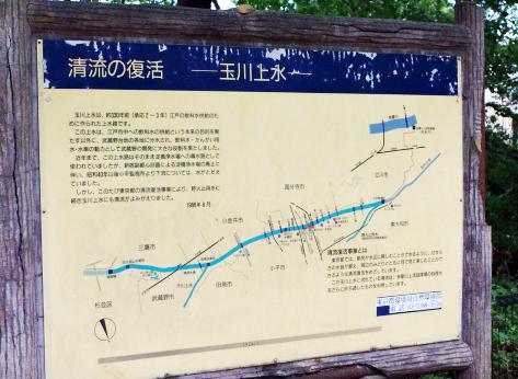2012_0813k-x0060a.jpg