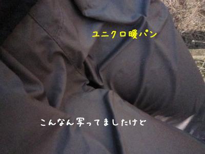 250110B.jpg