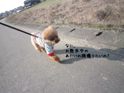 250110D.jpg