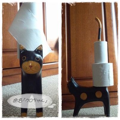 cats-1.jpg