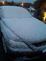 ゆ、雪だー!