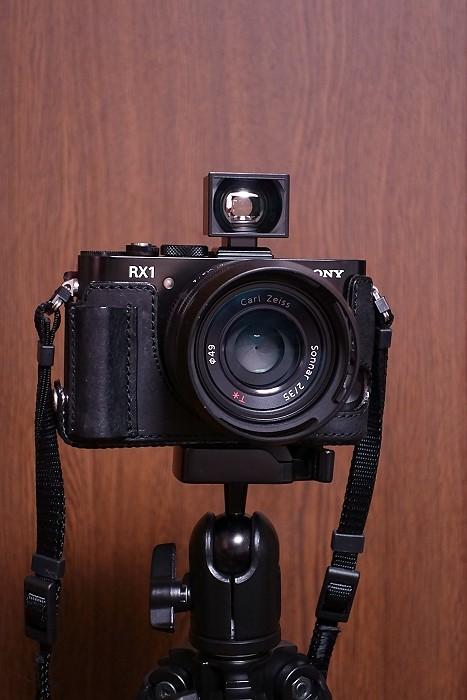 DSC00557-s.jpg