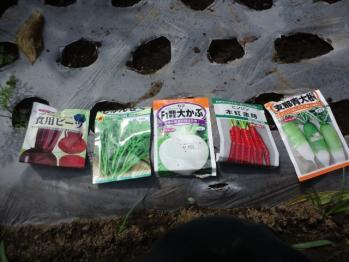 20130825秋蒔き野菜