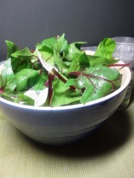 20131022ほうれん草とカブのサラダ