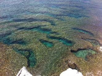 崖の下の海