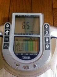 内臓脂肪レベル