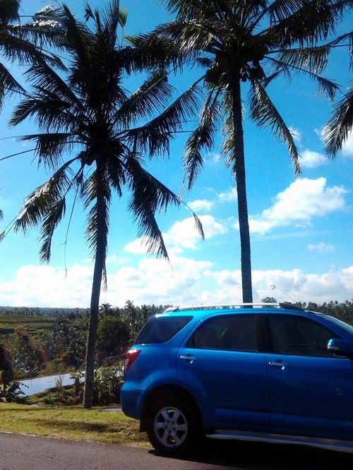 201281青い車
