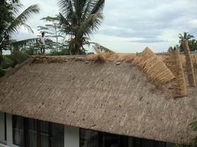 201282屋根