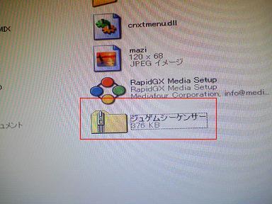 SA3A0011.jpg