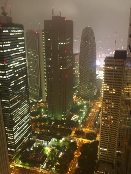 都庁からの夜景(東京モード学園)