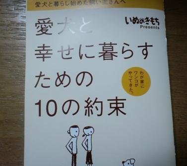 blog3398.jpg