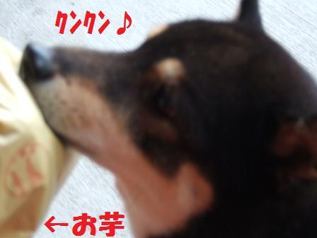 blog3576.jpg