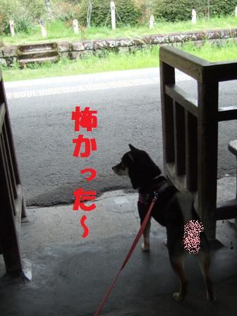 blog3588.jpg