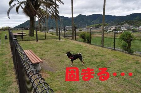 blog3619.jpg