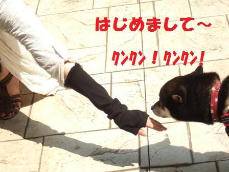 blog3690.jpg