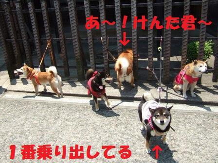 blog3701.jpg