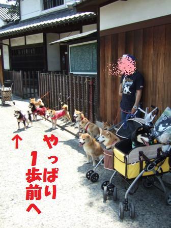 blog3703.jpg