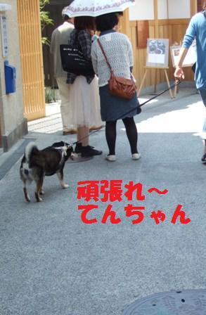 blog3709.jpg