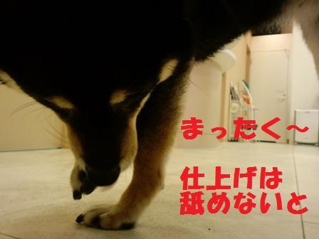 blog3796.jpg