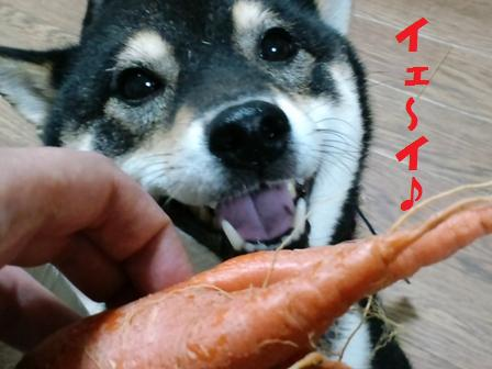 blog3877.jpg