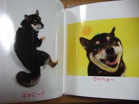 blog4033.jpg