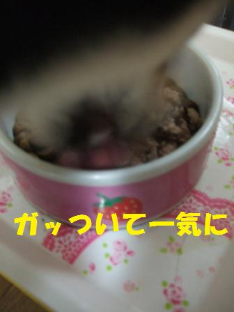 blog4036.jpg