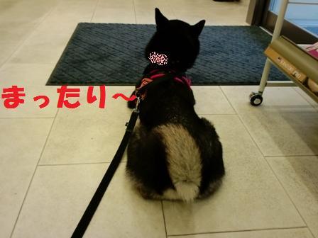 blog4243.jpg