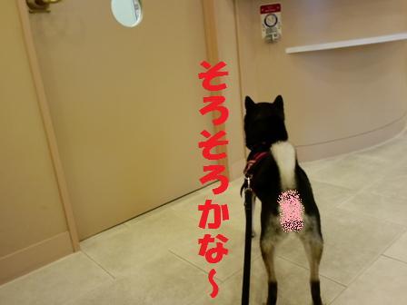 blog4244.jpg
