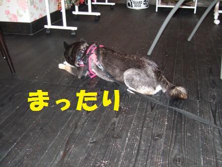 blog4343.jpg