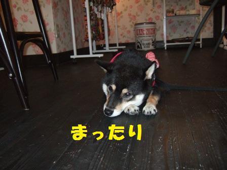 blog4346.jpg