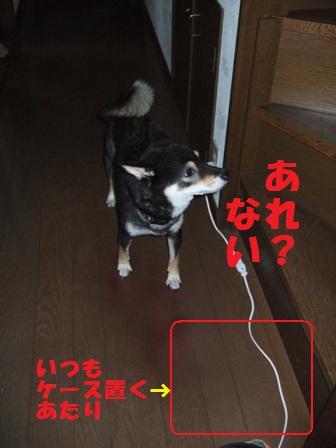 blog4401.jpg