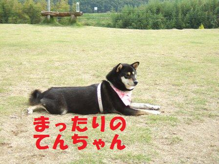 blog4457.jpg