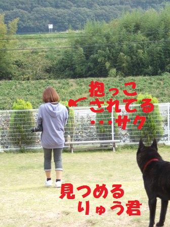 blog4458.jpg