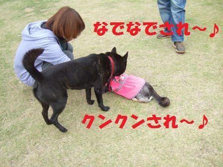 blog4460.jpg