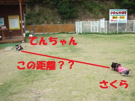 blog4462.jpg
