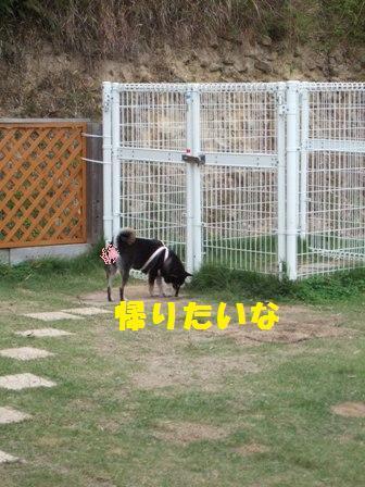 blog4485.jpg