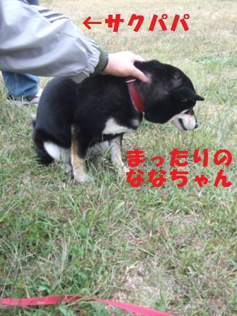 blog4589.jpg