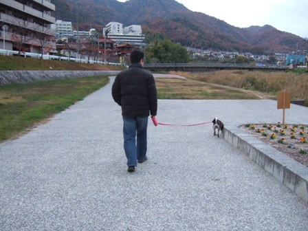 blog4668.jpg