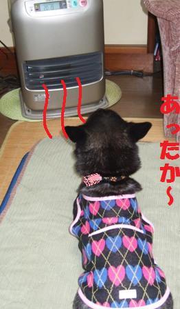 blog4693.jpg