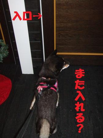 blog4701.jpg