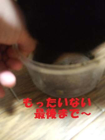 blog4730.jpg